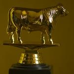 Golden Bull Awards 2009